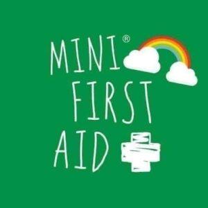 Mini first aid Heathfield classes